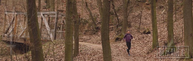 Lesopark Brno, běhání